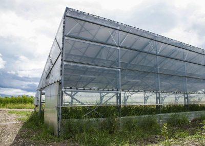 Greenhouses012