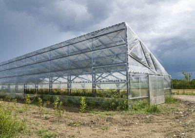 Greenhouses013
