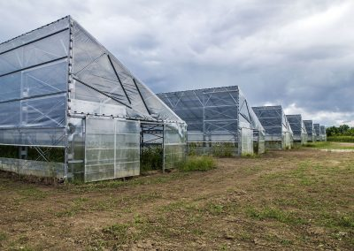 Greenhouses014