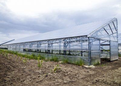 Greenhouses015