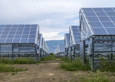 Greenhouses016