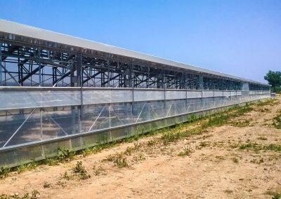 Greenhouses018