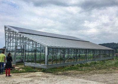 Greenhouses019
