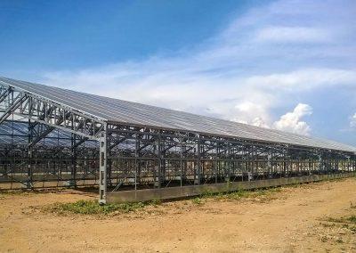 Greenhouses026