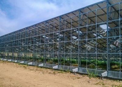 Greenhouses027