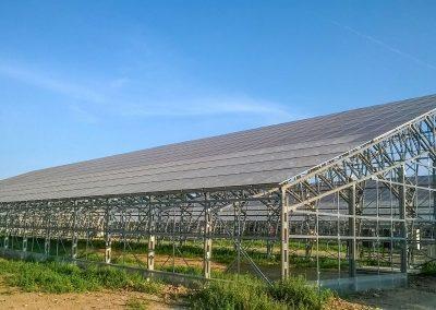 Greenhouses031