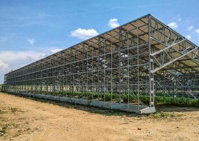 Greenhouses033