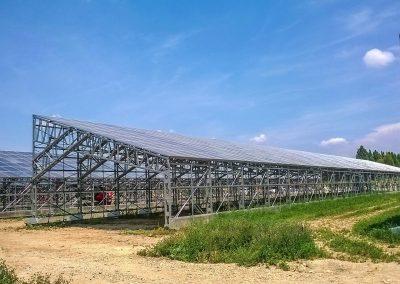 Greenhouses034