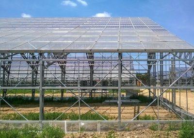 Greenhouses035