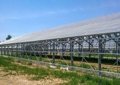 Greenhouses036
