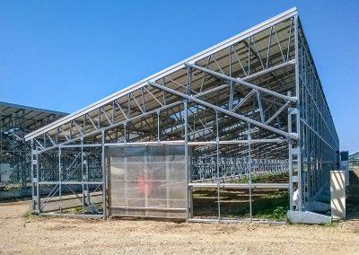 Greenhouses040