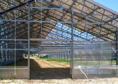 Greenhouses049