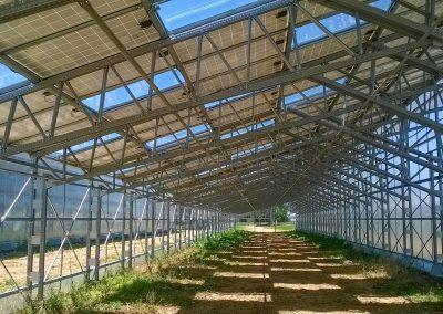 Greenhouses052