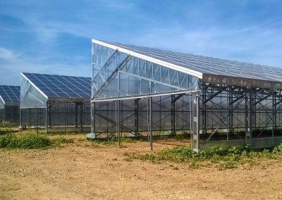 Greenhouses054