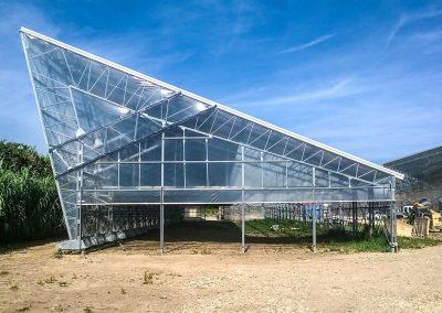 Greenhouses056