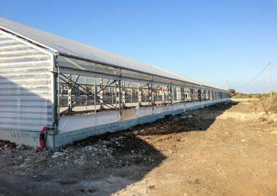 Greenhouses057