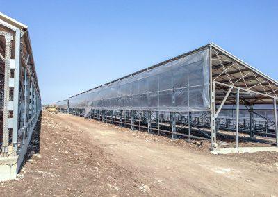 Greenhouses058